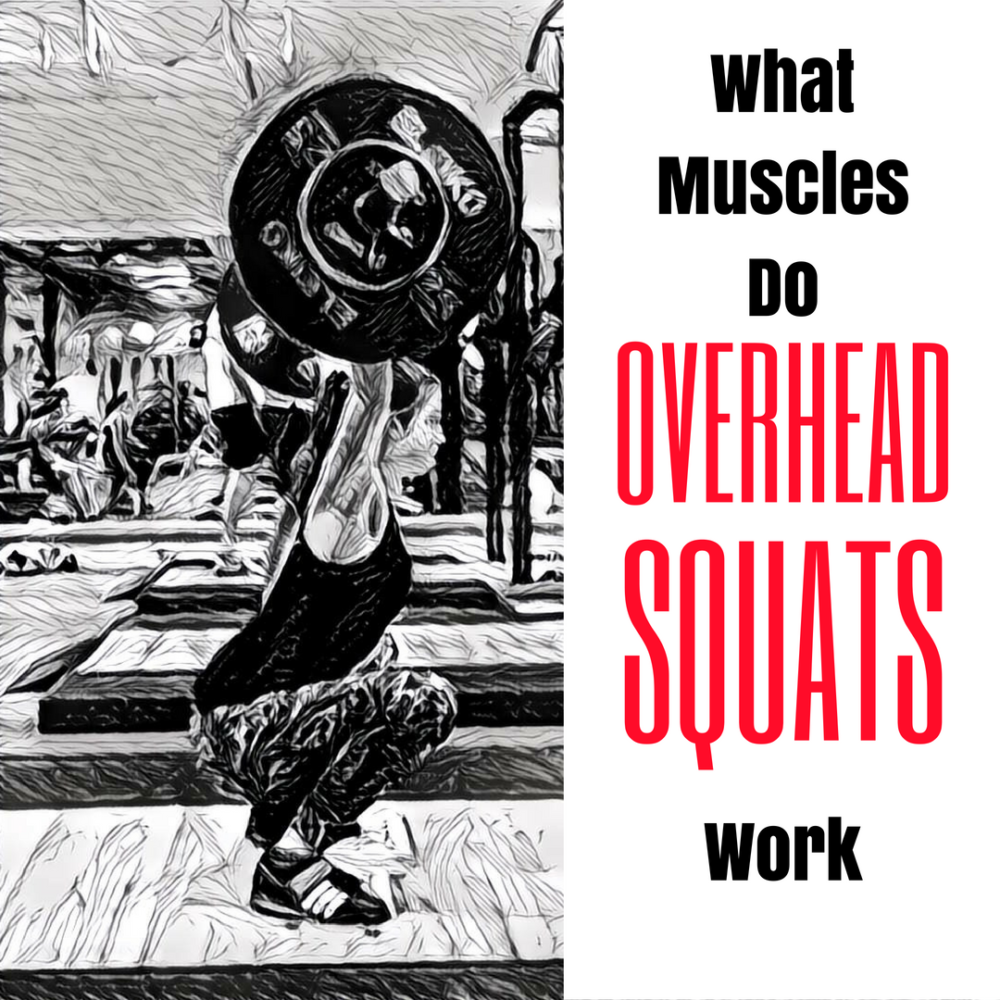 Overhead-Squat-What-Muscles-Do-Overhead-Squats-work