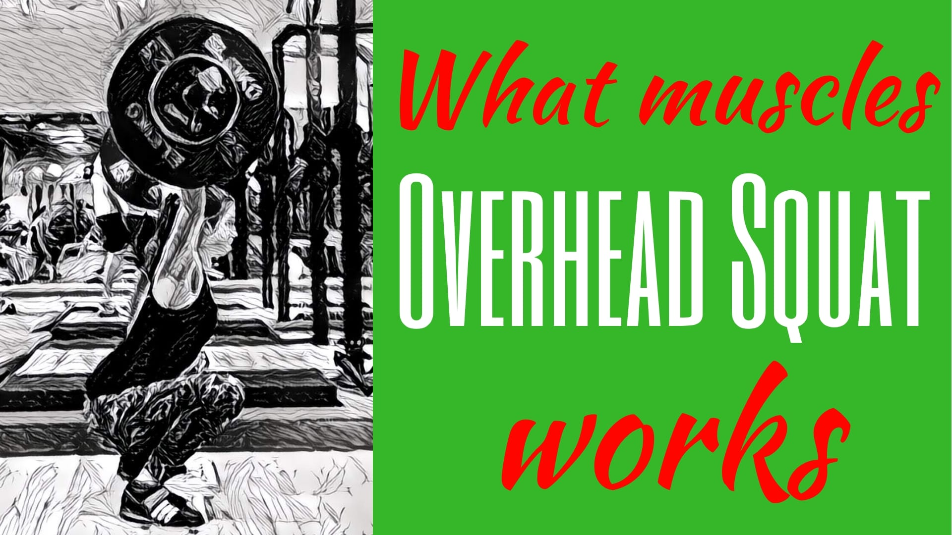 Overhead-Squat-muscles-worked-What-muscles-do-Overhead-Squats-work