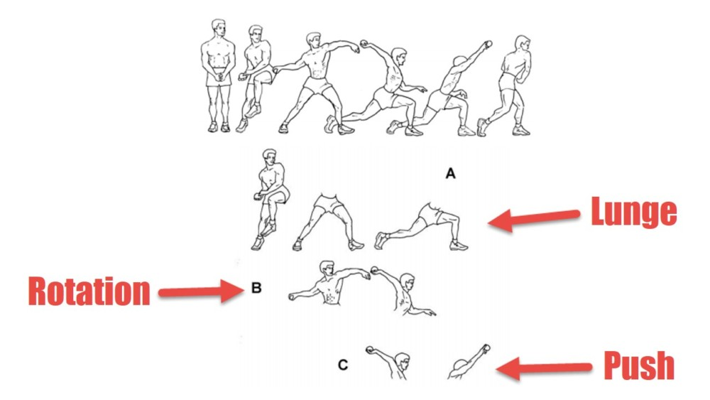 Fundamental Movments, source: http://www.ideafit.com/files/236_Primal_Pattern_Movement_System_Toles_T.pdf
